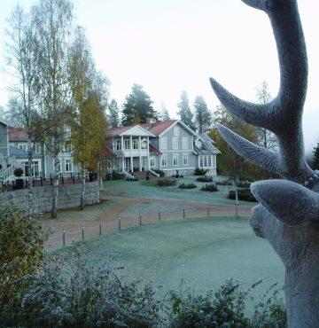 Hjort i frost