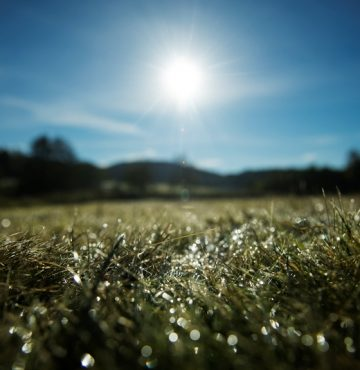 Golfbanen på Losby Gods. Foto: Benjamin A. Ward