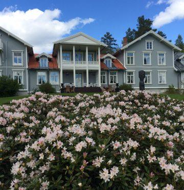 Losby Gods - Rhodedendron blomstrer i hagen foran hotellet