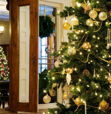 Juletrær i gamlegodset på Losby Gods